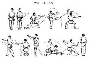 kung-fu-enchainement-wubuquan-kungfu-taolu-cours-lyon-enfants