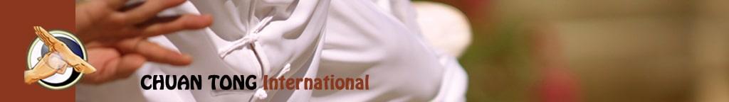 Tai Chi style Chen et Kungfu à Lyon – Chuan Tong