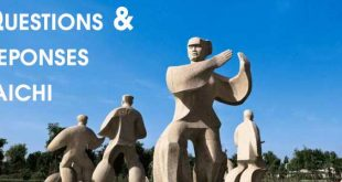 FAQ-Questions-Reponses-Taichi-Taiji-Quan-Tai-Chi-Lyon