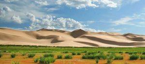 Gobi-Desert-Chine-Mongolie-Chameaux