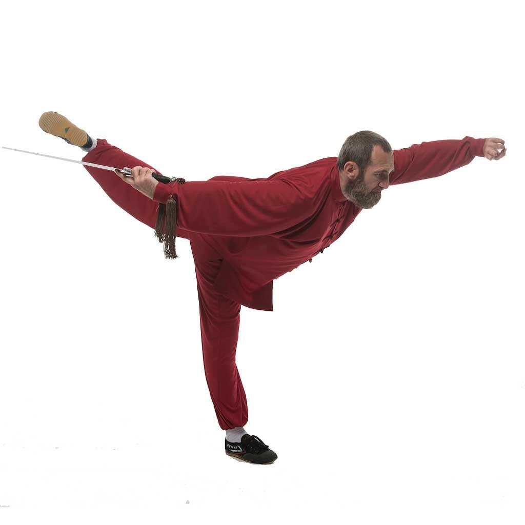 Cours-Kungfu-Wushu-Lyon-Philippe-Tai-Chi