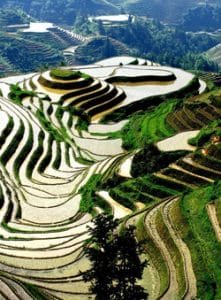 Stage-Taichi-Voyage-Chine-Longsheng Longji