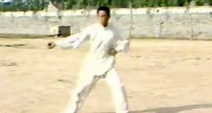 Tai-Chi-Style-Chen-Xinjia-Erlu-Wang-Xi-An-Video