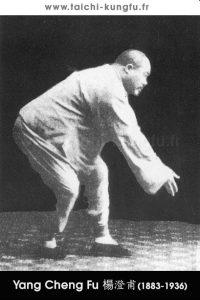 Tai-Chi-style-Yang-Chengfu-Lyon-Taichi-20