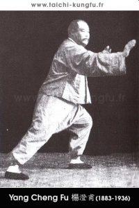 Tai-Chi-style-Yang-Chengfu-Lyon-Taichi-28