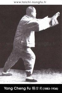 Tai-Chi-style-Yang-Chengfu-Lyon-Taichi-30