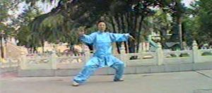 Taichi-Taiji-Quan-style-Chen-Shen-Zhen-Jun-Yilu-Forme-Complete
