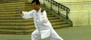 Taichi-style-Chen-Zheng-Xu-Dong-15-Mouvements-Cours-Lyon