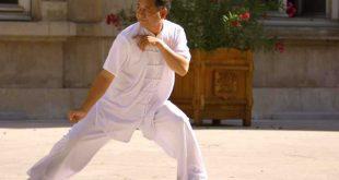 Maitre-Zheng-Xu-Dong-Tai-Chi-Lyon-Taiji-Quan-style-Chen-Pic-2