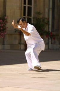 Maitre-Zheng-Xu-Dong-Tai-Chi-Lyon-Taiji-Quan-Taichi-style-Chen-Pic-4