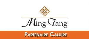 Bandeau-Partenaire-Ming-Tang-Tai-Chi-Kungfu-Enfants-Caluire2