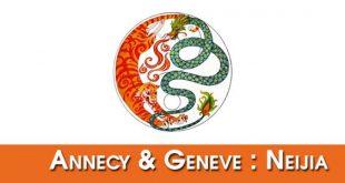 Bandeau-Partenaire-Neijia-Tai-Chi-Annecy-Geneve