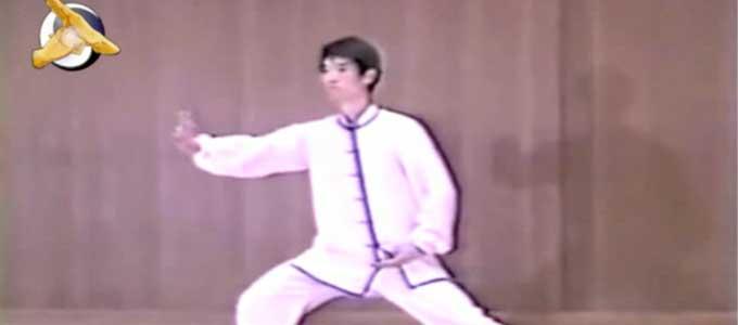 Chen-Pei-Shan-Tai-Chi-style-Chen-Xiaojia-Yilu