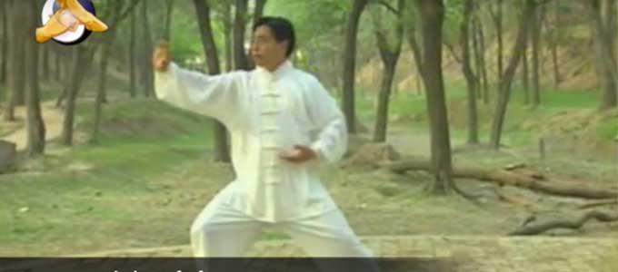 Chen-Xiao-Xing-Tai-Chi-style-Chen-Yilu-Lyon