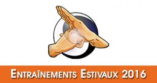 Entrainements-Estivaux-Tai-Chi-Kungfu-Lyon-Ete-2016