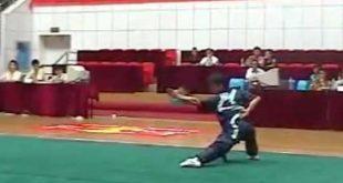 Kungfu-Wushu-Zhao-Gun-2004-Chang-Quan-Lyon