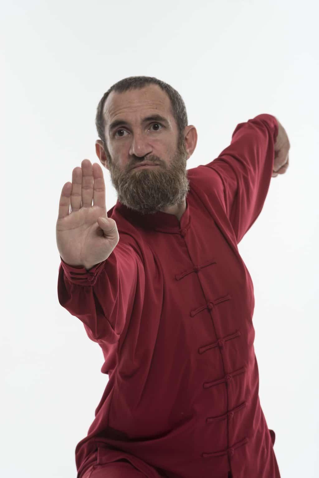 Cours-Kungfu-Wushu-Lyon-Enseignant-Philippe-1