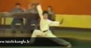 jet-li-li-lian-jie-1978-kungfu-wushu-chang-quan-lyon