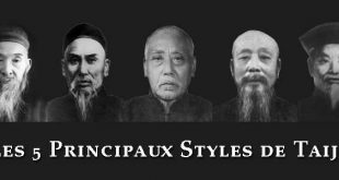 les-cinq-5-principaux-styles-de-tai-chi-grands-maitres-chen-fake-sun-lutang-wu-yang-luchan-lyon