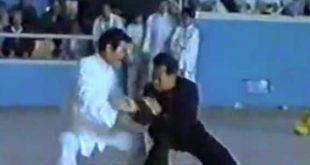 tai-chi-chuan-style-chen-tuishou-zheng-xu-dong-video-taiji-quan-taichi-luoyang-lyon