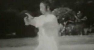 tai-chi-style-yang-taichi-chuan-zheng-man-qing-cheng-man-ching-taiji-quan-web