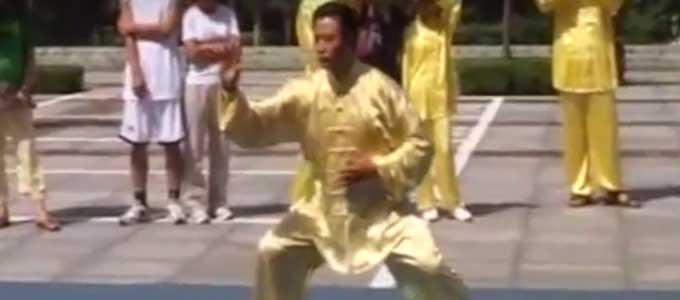 tai-chi-chuan-style-chen-xiaojia-chen-lifa-li-fa-taichi-taiji-quan-lyon