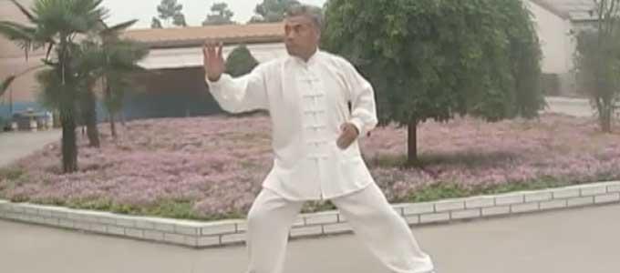Wang-Chang-Jiang-Tai-Chi-style-Chen-Laojia-Chenjiagou-Wang-Yan-Taichi-Lyon