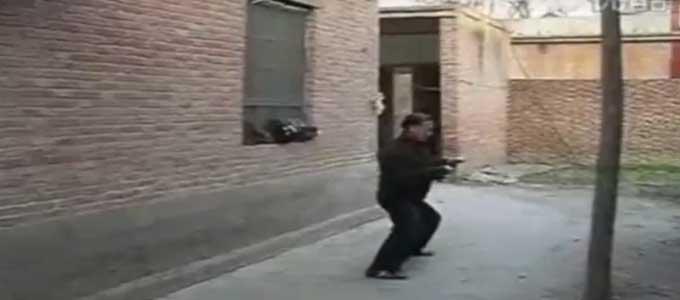 Chen-Qinghuan-4-Tai-Chi-style-Chen-Xiaojia-Yilu-Chenjiagou-Qing-Huan-Taichi-Lyon