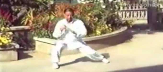 Chen-Qinghuan-Tai-Chi-style-Chen-Xiaojia-Erlu-Paochui-Chenjiagou-Qing-Huan-Taichi-Lyon