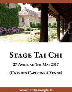 Infos-Stage-Tai-Chi-Style-Chen-Yenne-2017-Taichi-Lyon-Image