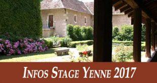 Infos-Stage-Tai-Chi-Style-Chen-Yenne-2017-Taichi-Lyon