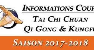 tai chi lyon qi gong kungfu wushu informations cours