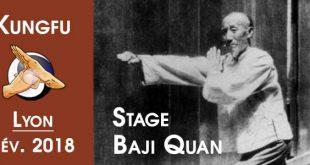 Stage-Baji-Quan-Kungfu-Wushu-Lyon-Fevrier-2018-c