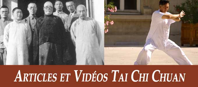 articles et videos tai chi style chen yang cours taichi lyon tai chi style chen et kungfu. Black Bedroom Furniture Sets. Home Design Ideas