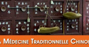 FAQ-Questions-Reponses-Medecine-Traditionnelle-Chinoise-MTC-Lyon-Taichi-Kungfu