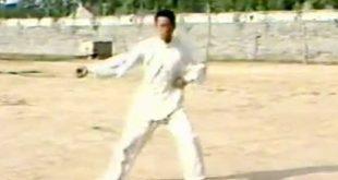 Tai-Chi-Style-Chen-Xinjia-Erlu-Wang-Xi-An-Video