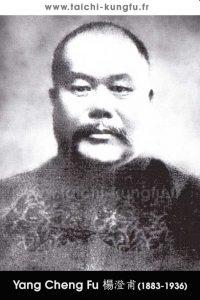 Tai Chi style Yang Chengfu Lyon Taichi 0 Portrait