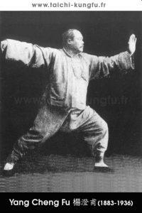 Tai-Chi-style-Yang-Chengfu-Lyon-Taichi-6