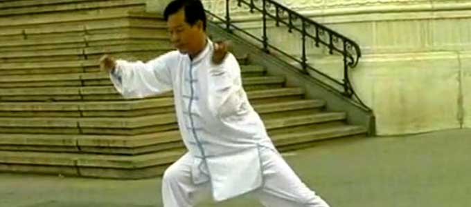 tai chi style chen maitre zheng xu dong 15 mouvements tai chi style chen et kungfu lyon. Black Bedroom Furniture Sets. Home Design Ideas