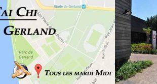 Cours Tai Chi Gerland - Tai Chi Lyon 7 style Chen