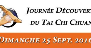 Journee-Decouverte-Tai-Chi-Lyon-25-Septembre-2016