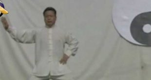 video-chen-shi-tong-yilu-tai-chi-kung-fu-lyon
