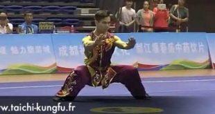 championnat-chine-kungfu-wushu-2016-nan-quan-1ere-place-wang-di-lyon