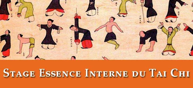 stage-tai-chi-qi-gong-lyon-essence-interne-2017-taiji-quan-taichi-chuan