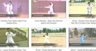 bandeau-gallerie-youtube-video-tai-chi-chuan-taichi-taiji-quan-lyon