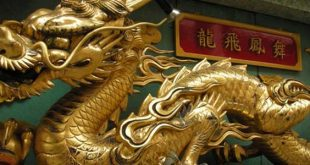 documentaire-video-chine-l-appetit-du-dragon-chinois-tai-chi-lyon