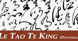 tao te king lao tseu laozi dao de jing traduction duyvendak