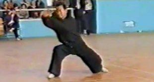 tai-chi-chuan-style-chen-zheng-xu-dong-laojia-video-taiji-quan-luoyang-1989-lyon