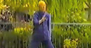 tai-chi-chuan-style-wang-chen-ri-70-ans-zhaobao-zhaobaojia-yilu-video-taiji-quan-chenjiagou-1988-lyon