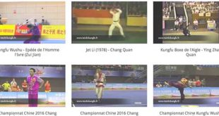 gallerie-video-kungfu-wushu-youtube-tai-chi-kungfu-wushu-cours-a-lyon